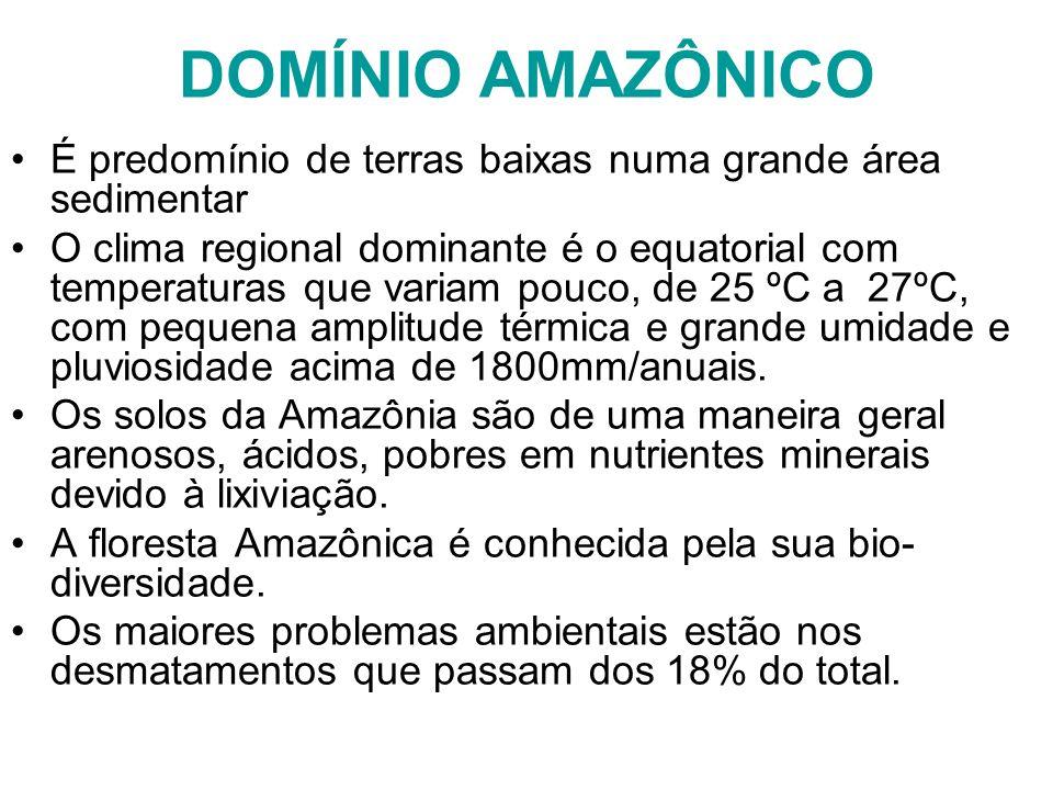 DOMÍNIO AMAZÔNICO É predomínio de terras baixas numa grande área sedimentar O clima regional dominante é o equatorial com temperaturas que variam pouc