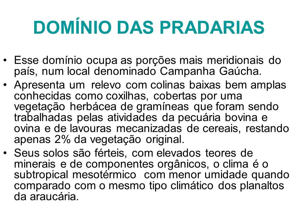 DOMÍNIO DAS PRADARIAS Esse domínio ocupa as porções mais meridionais do país, num local denominado Campanha Gaúcha. Apresenta um relevo com colinas ba