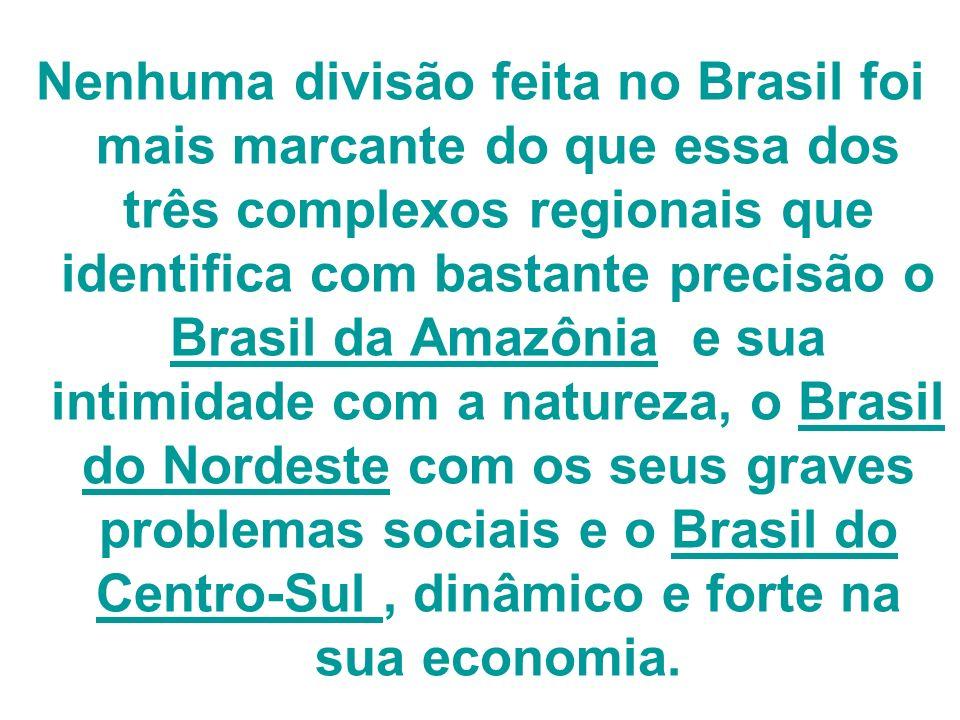 Nenhuma divisão feita no Brasil foi mais marcante do que essa dos três complexos regionais que identifica com bastante precisão o Brasil da Amazônia e