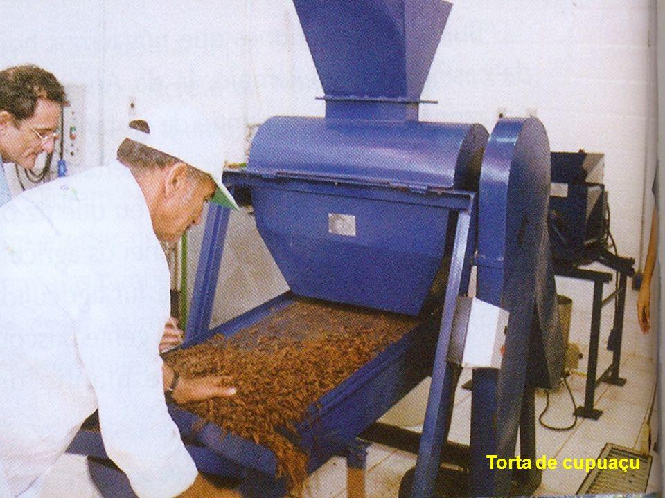 Torta de cupuaçu