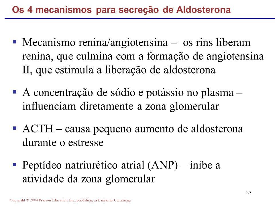 Copyright © 2004 Pearson Education, Inc., publishing as Benjamin Cummings 23 Mecanismo renina/angiotensina – os rins liberam renina, que culmina com a