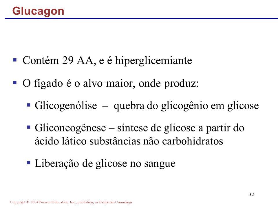 Copyright © 2004 Pearson Education, Inc., publishing as Benjamin Cummings 32 Contém 29 AA, e é hiperglicemiante O fígado é o alvo maior, onde produz: