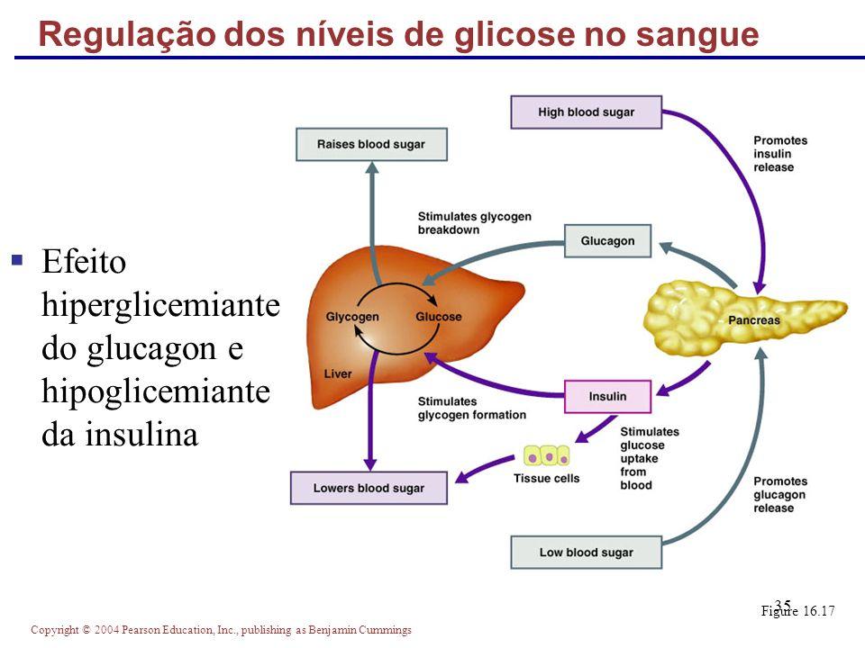 Copyright © 2004 Pearson Education, Inc., publishing as Benjamin Cummings 35 Regulação dos níveis de glicose no sangue Efeito hiperglicemiante do gluc