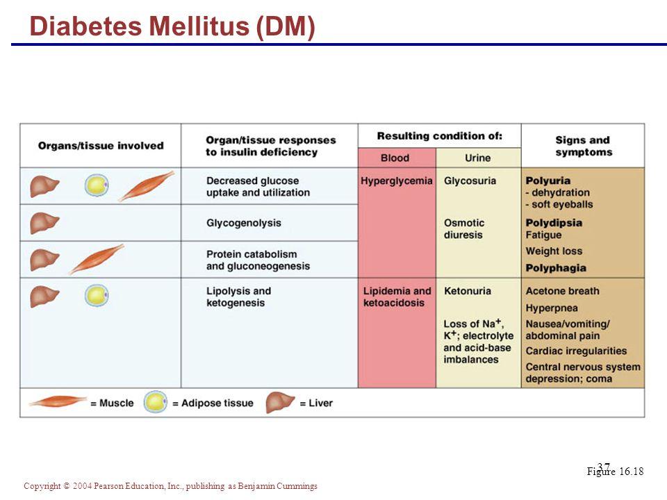 Copyright © 2004 Pearson Education, Inc., publishing as Benjamin Cummings 37 Figure 16.18 Diabetes Mellitus (DM)