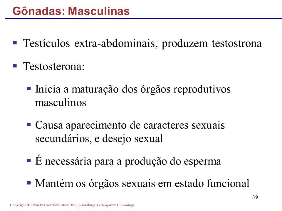 Copyright © 2004 Pearson Education, Inc., publishing as Benjamin Cummings 39 Testículos extra-abdominais, produzem testostrona Testosterona: Inicia a