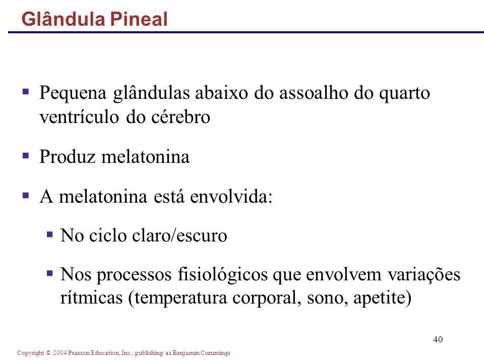 Copyright © 2004 Pearson Education, Inc., publishing as Benjamin Cummings 40 Pequena glândulas abaixo do assoalho do quarto ventrículo do cérebro Prod
