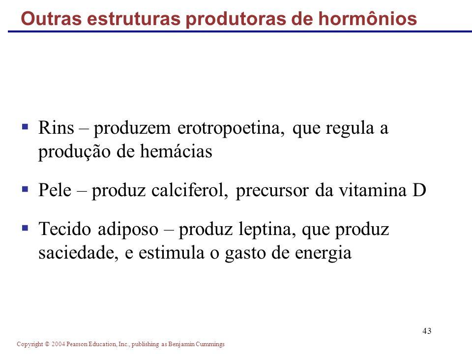 Copyright © 2004 Pearson Education, Inc., publishing as Benjamin Cummings 43 Rins – produzem erotropoetina, que regula a produção de hemácias Pele – p