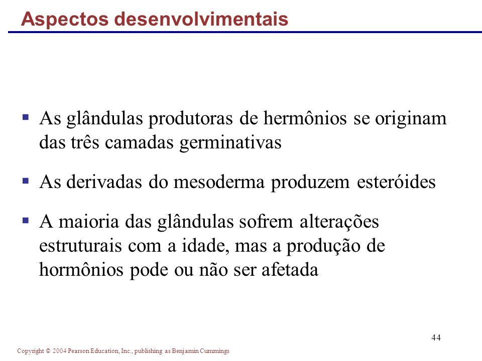 Copyright © 2004 Pearson Education, Inc., publishing as Benjamin Cummings 44 As glândulas produtoras de hermônios se originam das três camadas germina