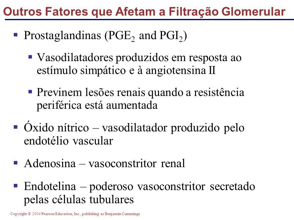Copyright © 2004 Pearson Education, Inc., publishing as Benjamin Cummings Outros Fatores que Afetam a Filtração Glomerular Prostaglandinas (PGE 2 and