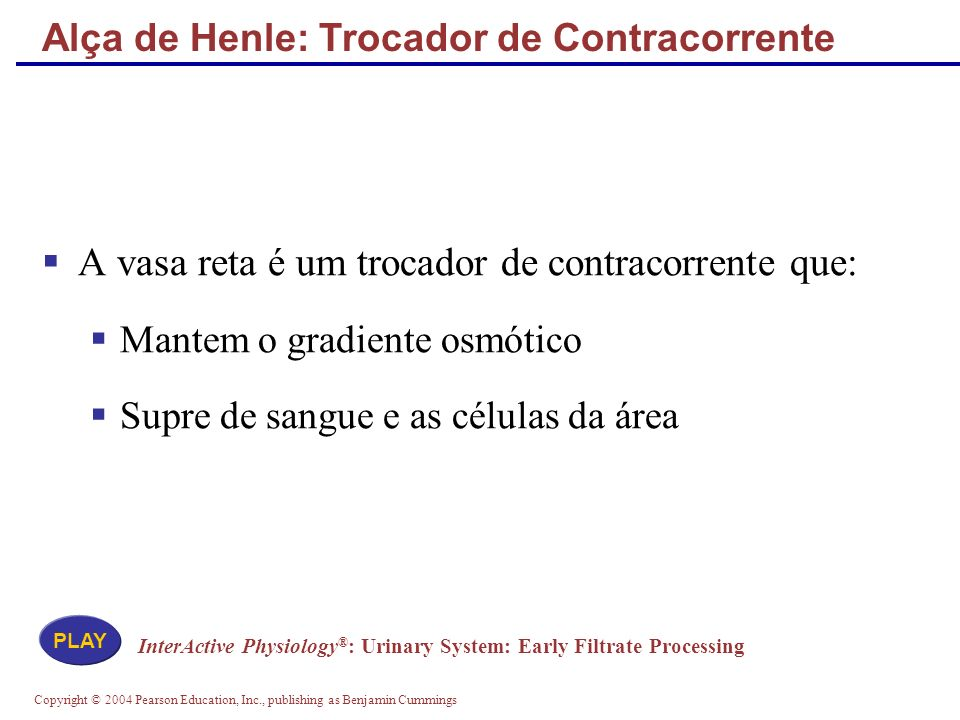 Copyright © 2004 Pearson Education, Inc., publishing as Benjamin Cummings Alça de Henle: Trocador de Contracorrente A vasa reta é um trocador de contr