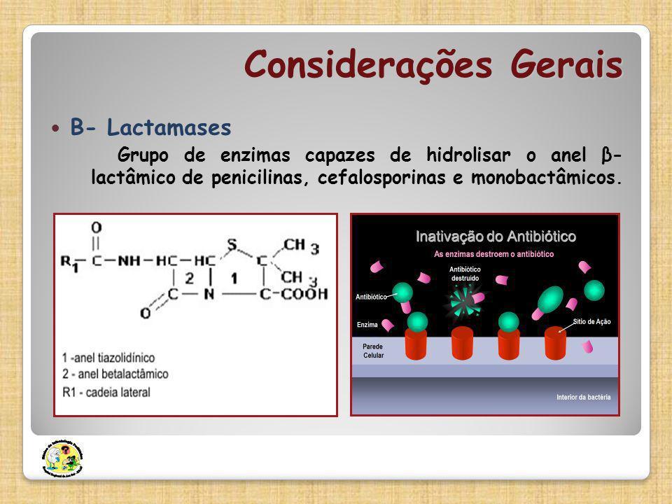 Considerações Gerais Β- Lactamases Grupo de enzimas capazes de hidrolisar o anel β- lactâmico de penicilinas, cefalosporinas e monobactâmicos.