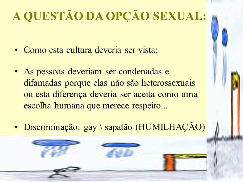 A QUESTÃO DA OPÇÃO SEXUAL: Como esta cultura deveria ser vista; As pessoas deveriam ser condenadas e difamadas porque elas não são heterossexuais ou e