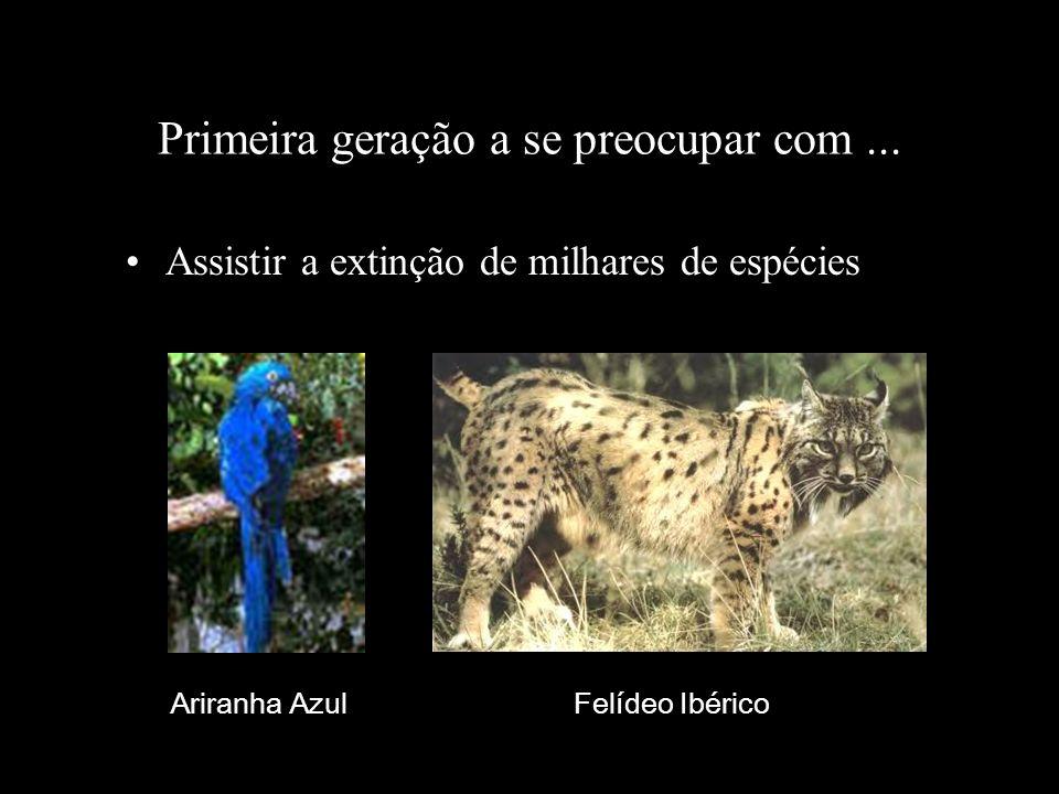 Primeira geração a se preocupar com... Assistir a extinção de milhares de espécies Ariranha Azul Felídeo Ibérico