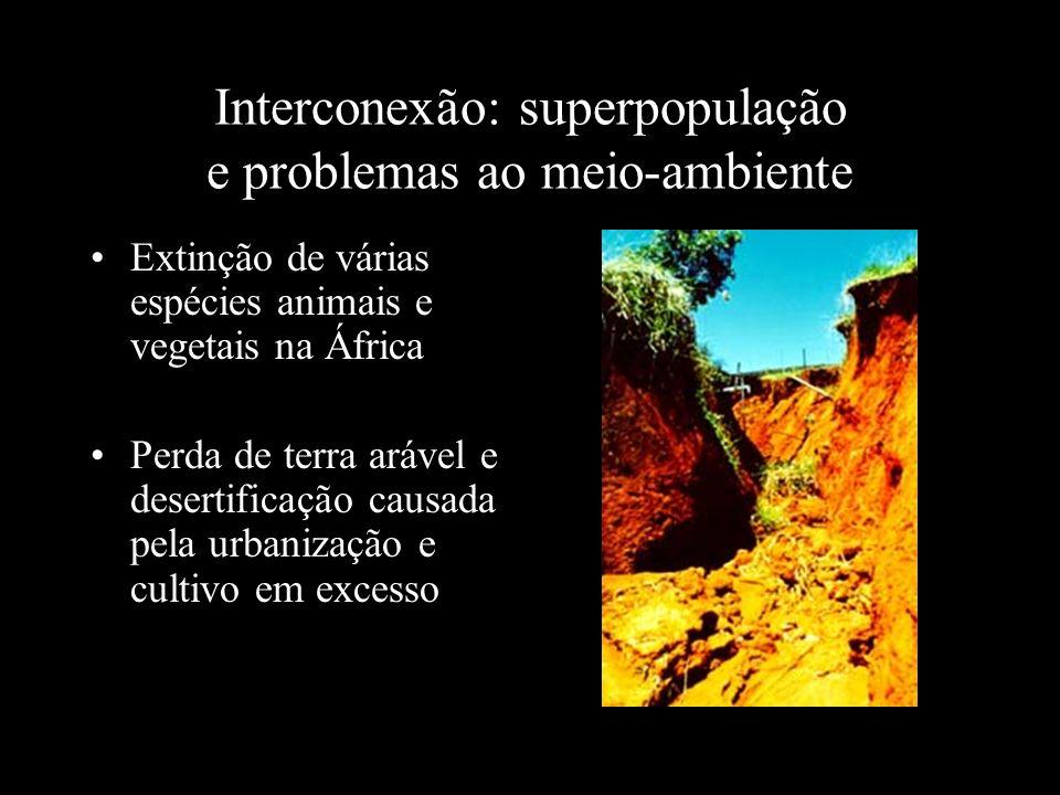 Interconexão: superpopulação e problemas ao meio-ambiente Extinção de várias espécies animais e vegetais na África Perda de terra arável e desertifica