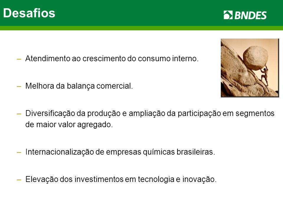 Desafios –Atendimento ao crescimento do consumo interno. –Melhora da balança comercial. –Diversificação da produção e ampliação da participação em seg