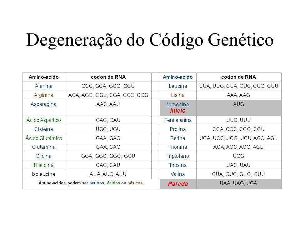 Degeneração do Código Genético Amino-ácidocodon de RNA Amino-ácidocodon de RNA AlaninaGCC, GCA, GCG, GCULeucinaUUA, UUG, CUA, CUC, CUG, CUU ArgininaAG