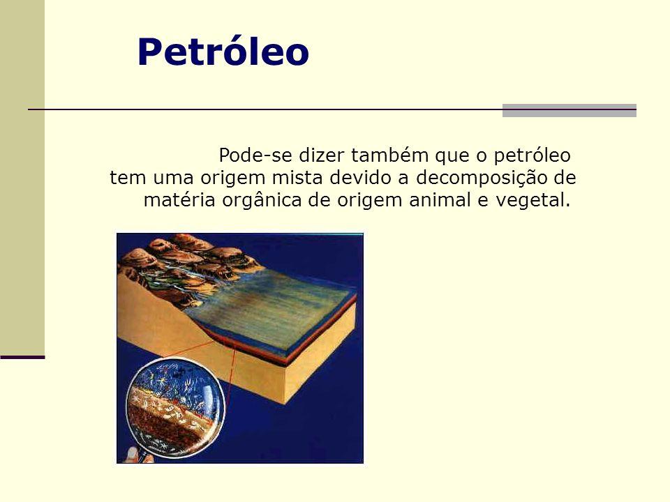 Pode-se dizer também que o petróleo tem uma origem mista devido a decomposição de matéria orgânica de origem animal e vegetal. Petróleo