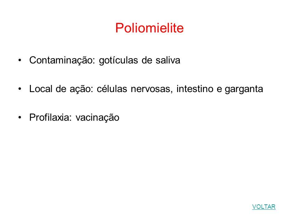 Poliomielite Contaminação: gotículas de saliva Local de ação: células nervosas, intestino e garganta Profilaxia: vacinação VOLTAR