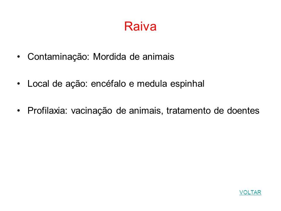 Raiva Contaminação: Mordida de animais Local de ação: encéfalo e medula espinhal Profilaxia: vacinação de animais, tratamento de doentes VOLTAR