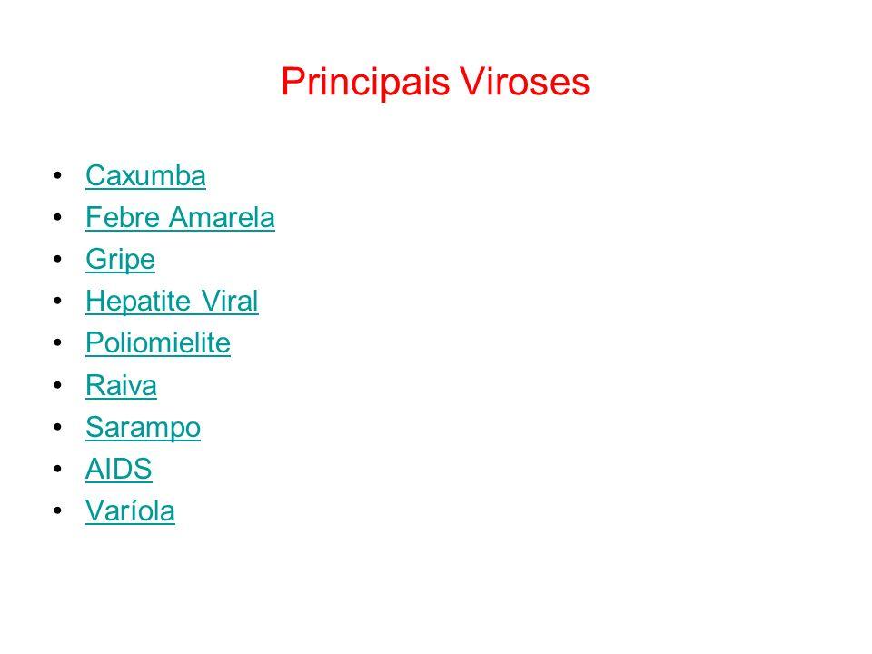 Principais Viroses Caxumba Febre Amarela Gripe Hepatite Viral Poliomielite Raiva Sarampo AIDS Varíola
