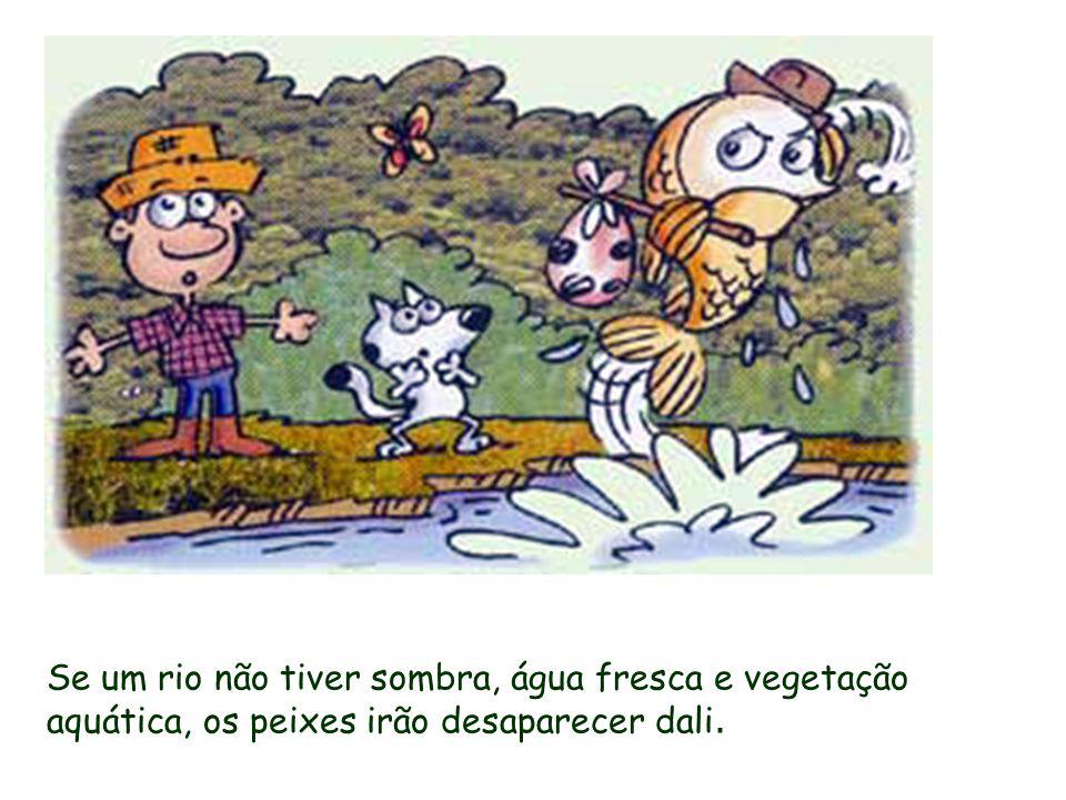 Se um rio não tiver sombra, água fresca e vegetação aquática, os peixes irão desaparecer dali.