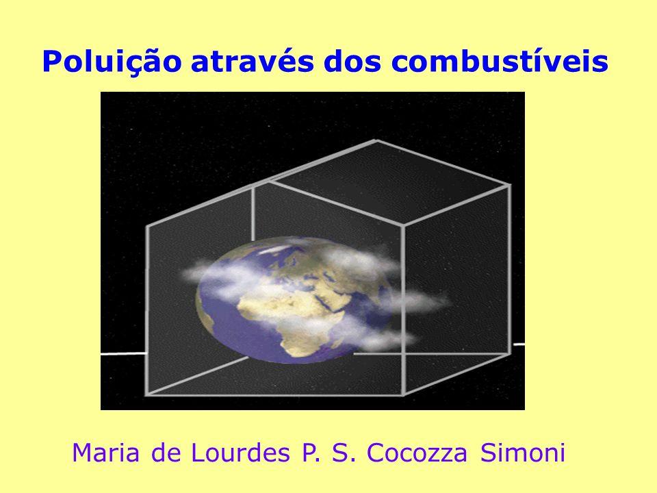 Poluição através dos combustíveis Maria de Lourdes P. S. Cocozza Simoni