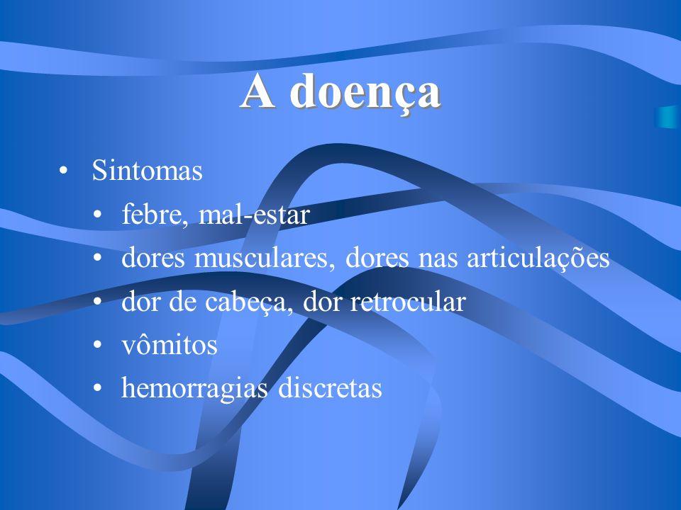 A doença Se houver reinfecção pelo mesmo sorotipo: IMUNIDADE por sorotipo diferente: DENGUE HEMORRÁGICO