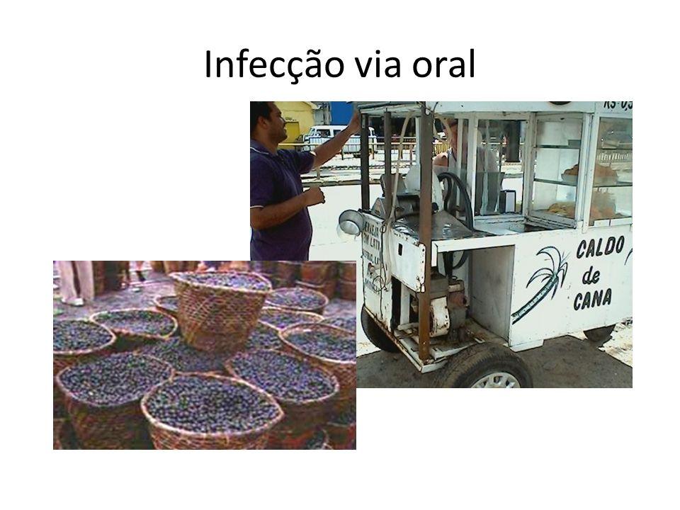 Infecção via oral