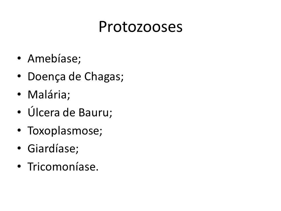 Protozooses Amebíase; Doença de Chagas; Malária; Úlcera de Bauru; Toxoplasmose; Giardíase; Tricomoníase.