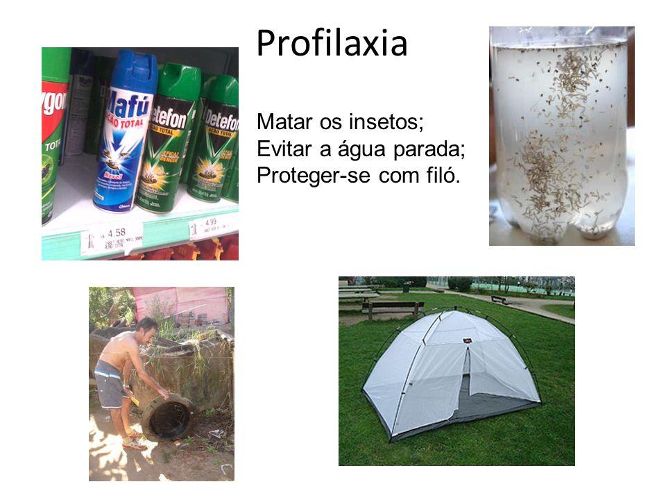 Profilaxia Matar os insetos; Evitar a água parada; Proteger-se com filó.