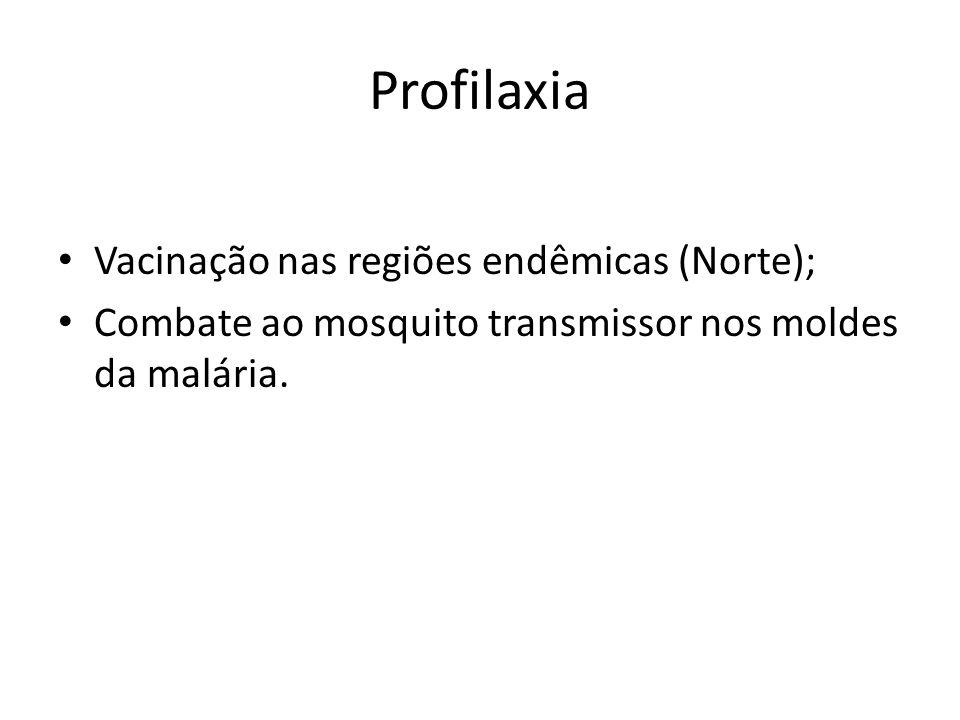 Profilaxia Vacinação nas regiões endêmicas (Norte); Combate ao mosquito transmissor nos moldes da malária.