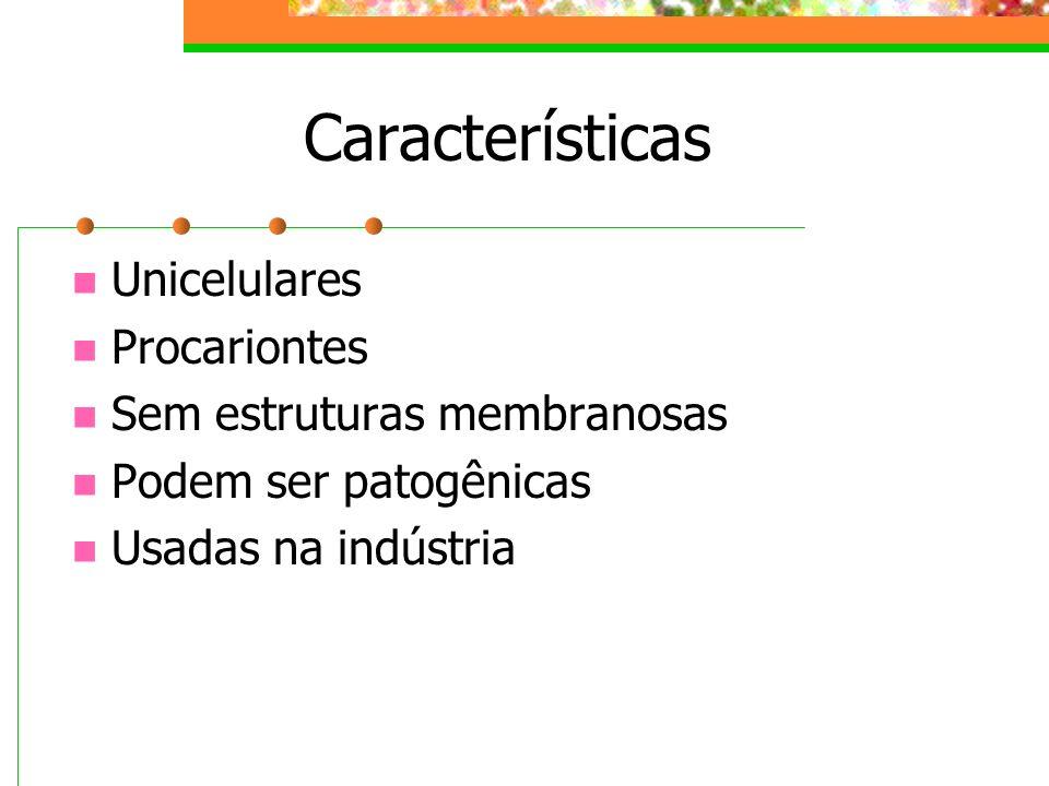 Estruturas Bacterianas
