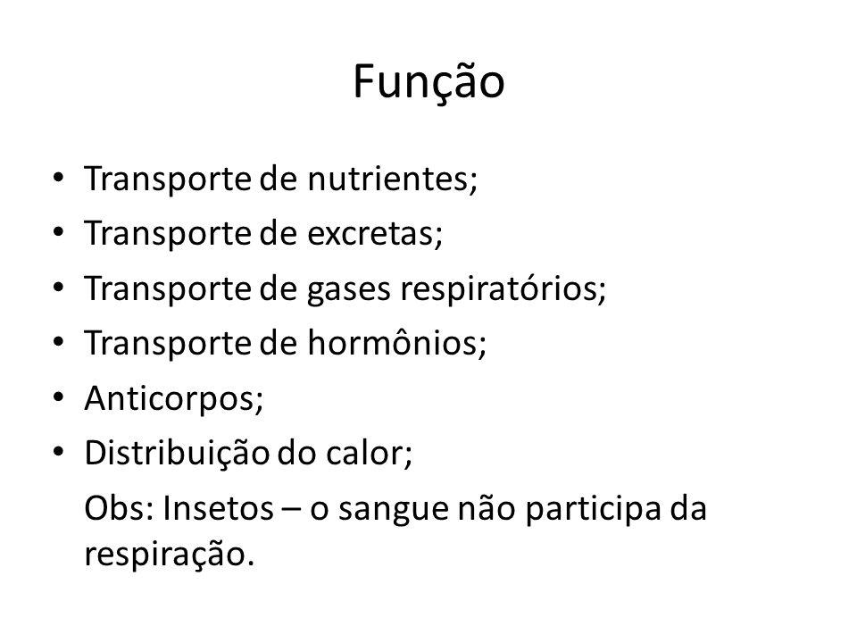 Função Transporte de nutrientes; Transporte de excretas; Transporte de gases respiratórios; Transporte de hormônios; Anticorpos; Distribuição do calor