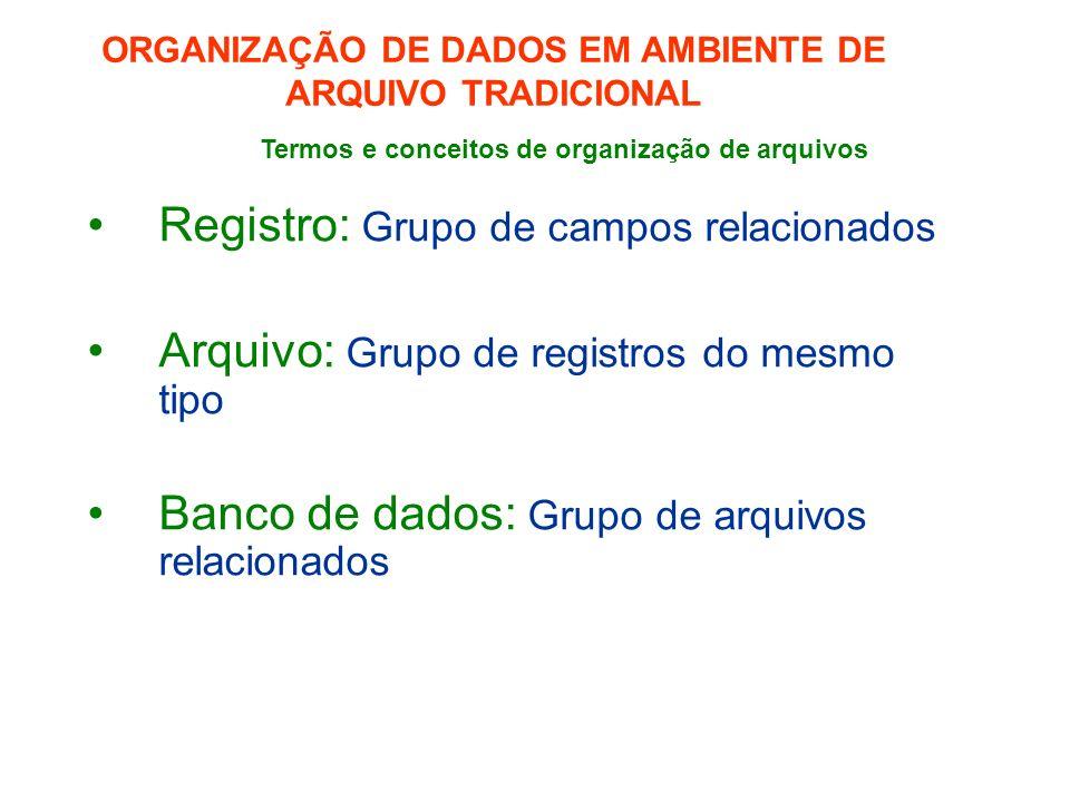 Registro: Grupo de campos relacionados Arquivo: Grupo de registros do mesmo tipo Banco de dados: Grupo de arquivos relacionados ORGANIZAÇÃO DE DADOS EM AMBIENTE DE ARQUIVO TRADICIONAL Termos e conceitos de organização de arquivos