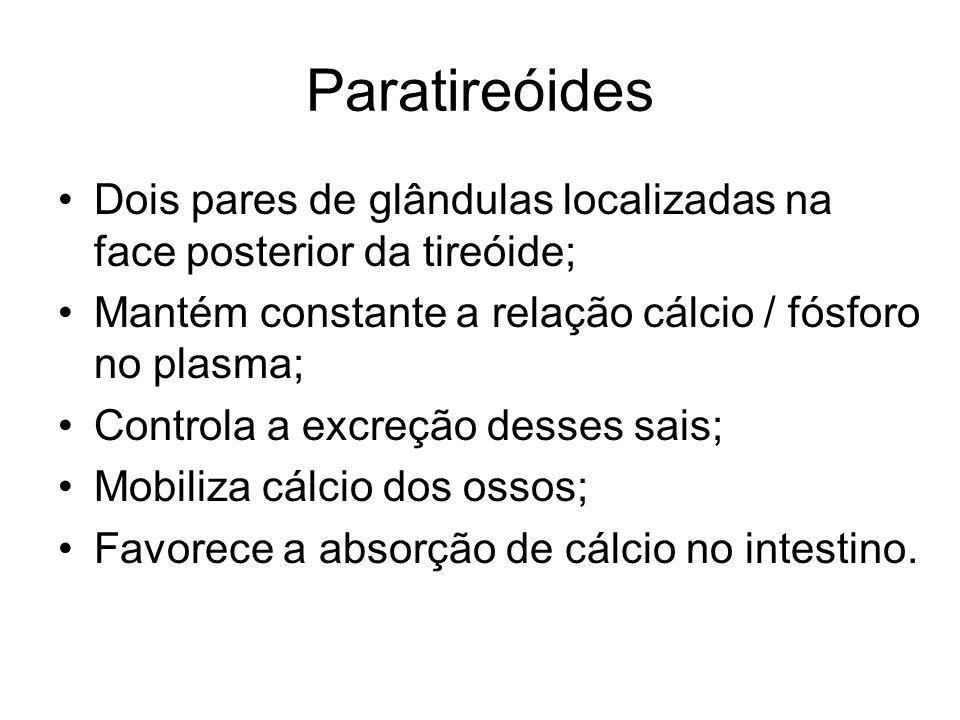 Paratireóides Dois pares de glândulas localizadas na face posterior da tireóide; Mantém constante a relação cálcio / fósforo no plasma; Controla a exc