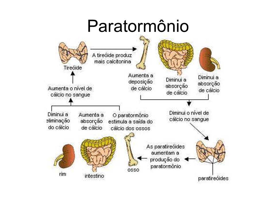 Paratormônio