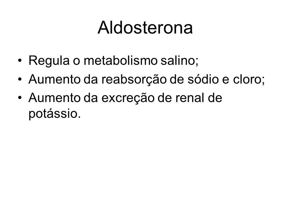 Aldosterona Regula o metabolismo salino; Aumento da reabsorção de sódio e cloro; Aumento da excreção de renal de potássio.