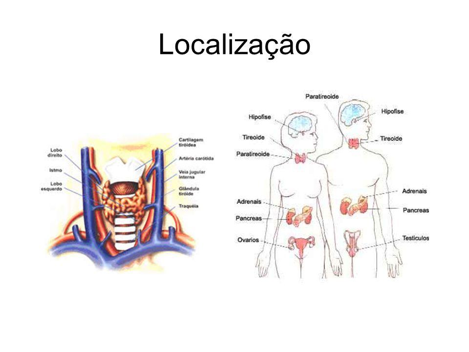 Hiperplasia genital