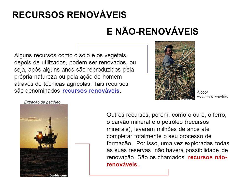 RECURSOS RENOVÁVEIS E NÃO-RENOVÁVEIS Alguns recursos como o solo e os vegetais, depois de utilizados, podem ser renovados, ou seja, após alguns anos s