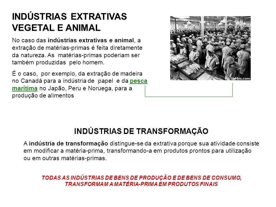 INDÚSTRIAS EXTRATIVAS VEGETAL E ANIMAL No caso das indústrias extrativas e animal, a extração de matérias-primas é feita diretamente da natureza. As m