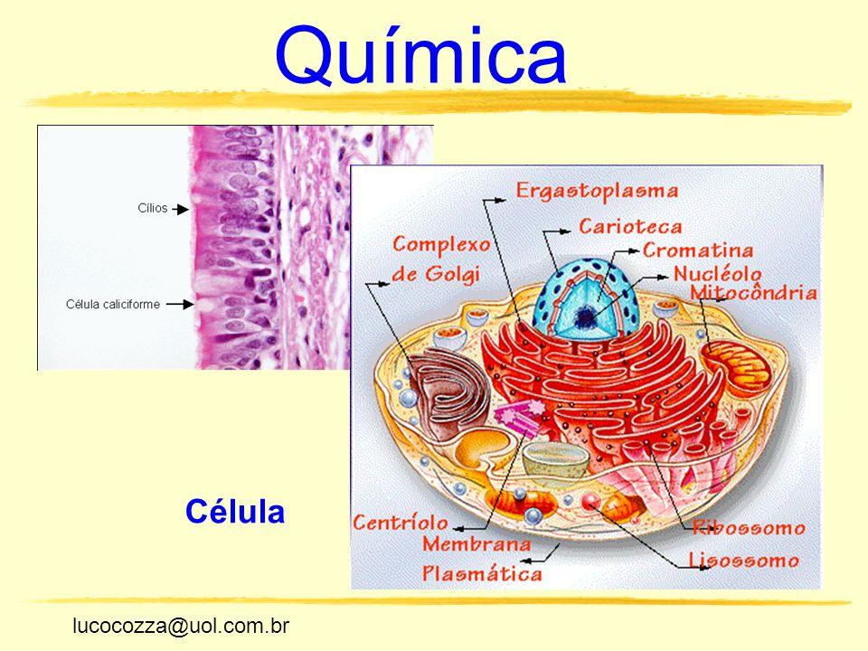 lucocozza@uol.com.br Unicamp lucocozza@uol.com.br Química Célula