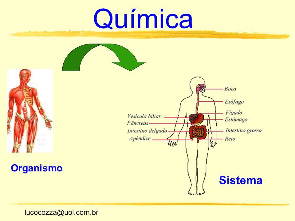 lucocozza@uol.com.br Unicamp lucocozza@uol.com.br Química Organismo Sistema