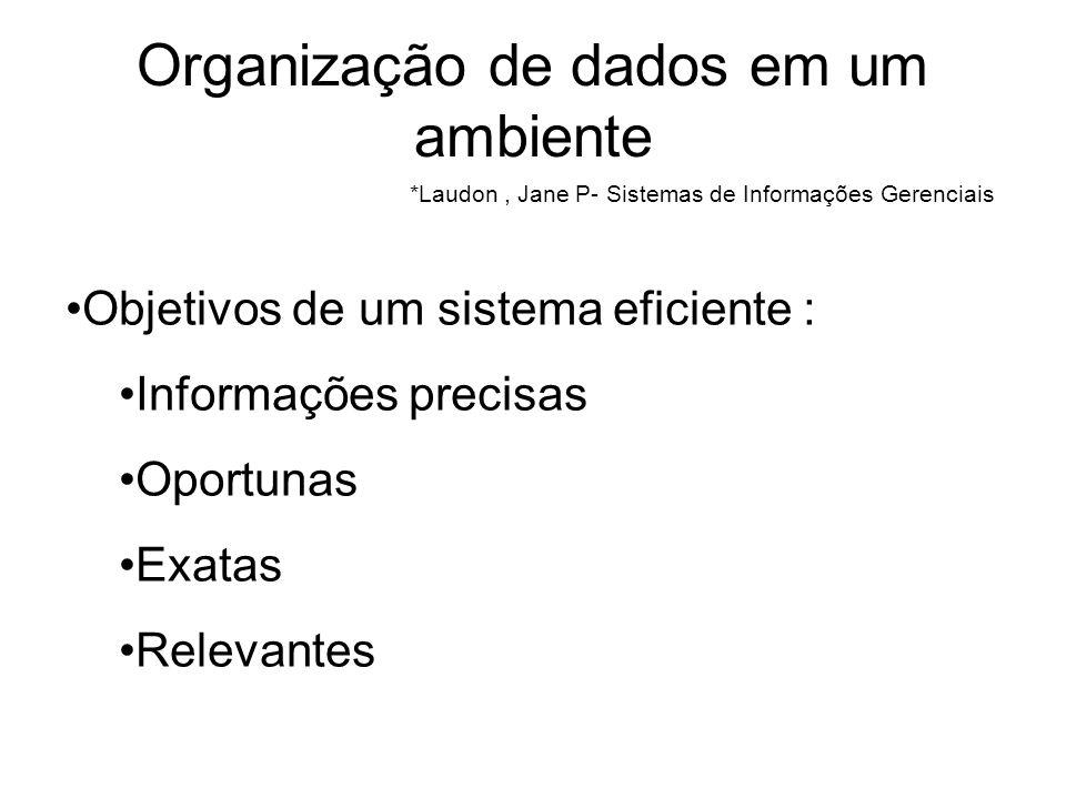 Organização de dados em um ambiente *Laudon, Jane P- Sistemas de Informações Gerenciais Objetivos de um sistema eficiente : Informações precisas Oport