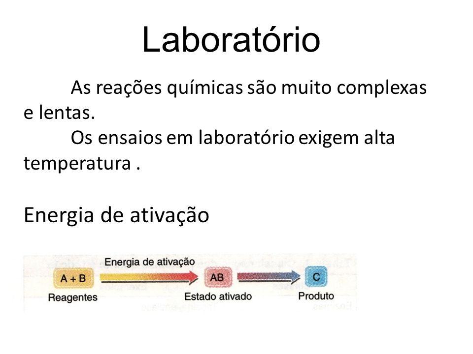 As reações químicas são muito complexas e lentas. Os ensaios em laboratório exigem alta temperatura. Energia de ativação Laboratório