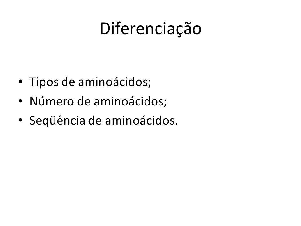 Diferenciação Tipos de aminoácidos; Número de aminoácidos; Seqüência de aminoácidos.