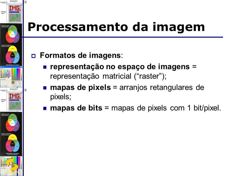 DSC/CEEI/UFC G Processamento da imagem Formatos de imagens: representação no espaço de imagens = representação matricial (raster); mapas de pixels = a