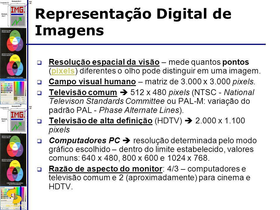 DSC/CEEI/UFC G Resolução espacial da visão – mede quantos pontos (pixels) diferentes o olho pode distinguir em uma imagem. Campo visual humano – matri