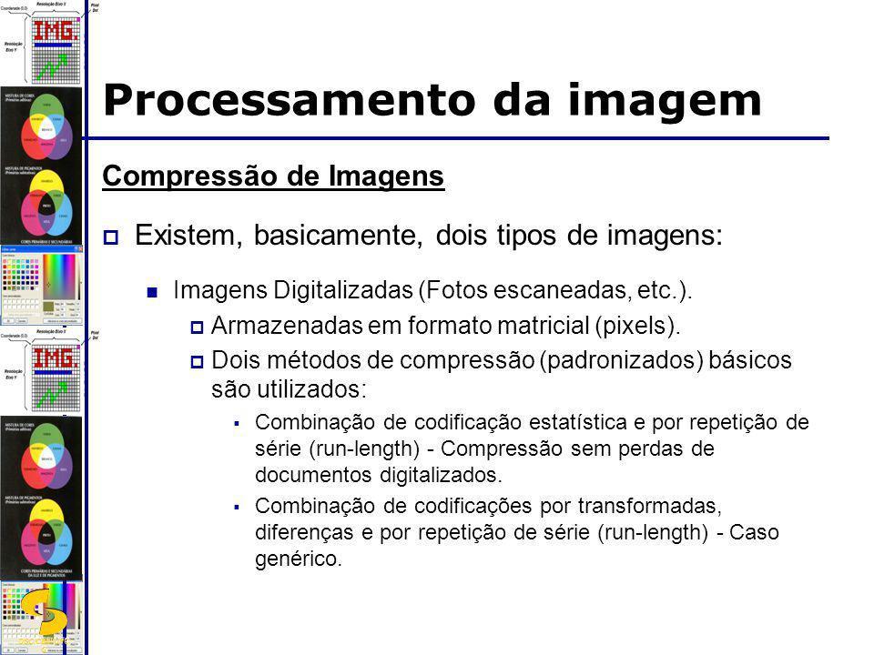 DSC/CEEI/UFC G Compressão de Imagens Existem, basicamente, dois tipos de imagens: Imagens Digitalizadas (Fotos escaneadas, etc.). Armazenadas em forma
