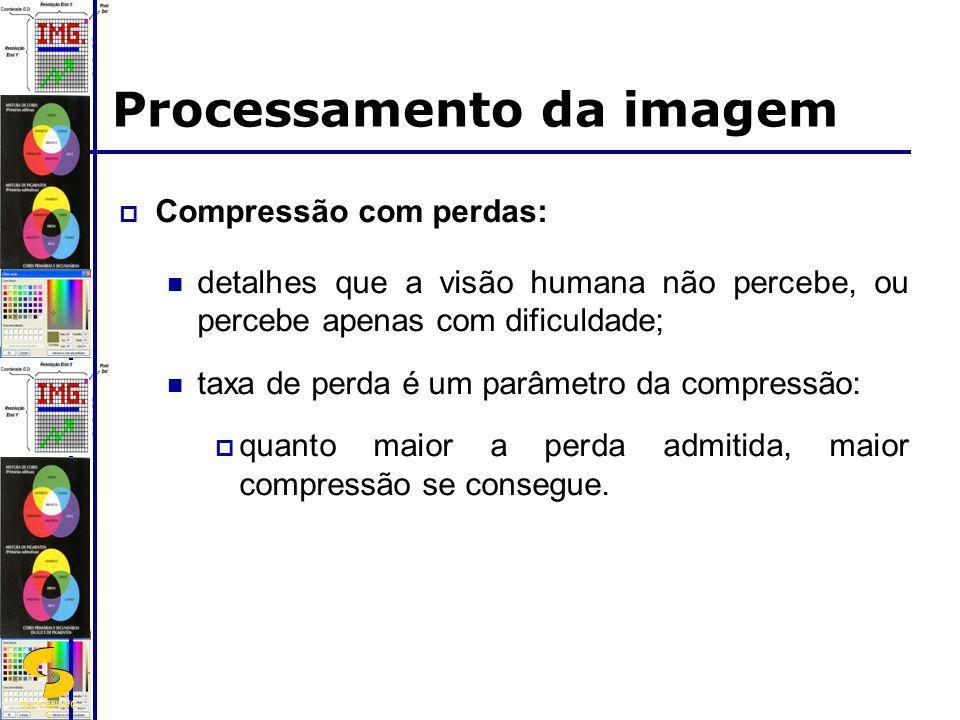 DSC/CEEI/UFC G Processamento da imagem Compressão com perdas: detalhes que a visão humana não percebe, ou percebe apenas com dificuldade; taxa de perd