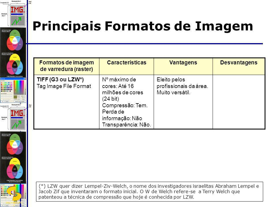 DSC/CEEI/UFC G Principais Formatos de Imagem Formatos de imagem de varredura (raster) CaracterísticasVantagensDesvantagens TIFF (G3 ou LZW*) Tag Image